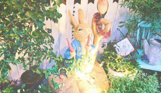 【潜入取材】アラサーOLが一人でピーターラビットカフェ自由が丘に行きました!ウサギさんが相席してくれるから寂しくないよ!