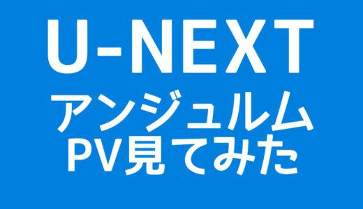 【レビュー】U-NEXTでアンジュルムのPVを見てみた